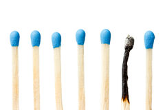 Burnt match and a whole blue matches Stock Image
