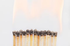 Burnt matches close-up Stock Images