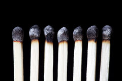 Burnt Matches, concept photography. Row of seven burned down wooden matches Stock Image