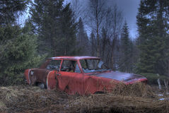 Burnt out Car. A burnt out old car in the forrest Stock Photography