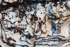 Burnt paper surface with dark charred page edges Stock Photos