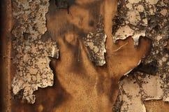 Burnt paperhangings Stock Photos