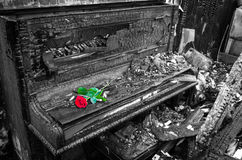Burnt piano with red rose flower Royalty Free Stock Image