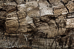 Burnt piece of wood close-up,  for use as background Royalty Free Stock Image
