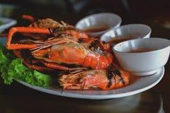 Burnt shrimp sea food. On dish stock photography