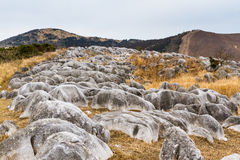 Burnt Winter Karst at Hiraodai. The otherworldly burnt winter landscape of Hiraodai Karst Plateau in Hiraodai Quasi-National Park in Kitakyushu, Japan, is one of Stock Photography