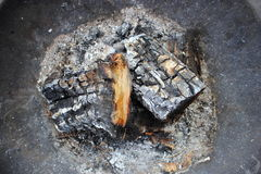 Burnt Wood Stock Images
