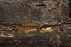 Burnt wood Royalty Free Stock Photography