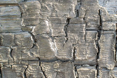 Burnt Wood or Charcoal Texture with Cracks Royalty Free Stock Photo