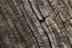 Burnt wood texture. Burnt cracked wood texture Stock Photo