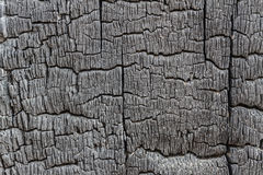 Burnt Wood Stock Photos