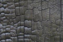 Burnt wood texture Stock Image