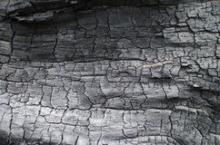 Burnt wood texture. Charred board Royalty Free Stock Image