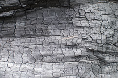 Burnt wood texture. Charred board Royalty Free Stock Photography