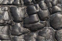 Burnt wood, texture Stock Image