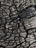 Burnt wood texture Royalty Free Stock Images