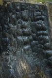 Burnt Wood Texture. Dark Abstract Wooden Background. Royalty Free Stock Image