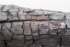 Burnt wood texture. Detail of Burnt wood texture Stock Images