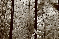 Burnt wooden background Royalty Free Stock Photos