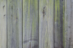 Burnt wooden wall background texture Royalty Free Stock Photo
