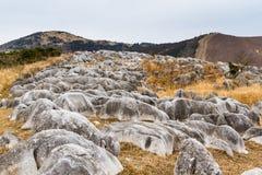 Burnt zima kras przy Hiraodai Fotografia Stock
