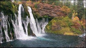 burny falls Arkivbilder