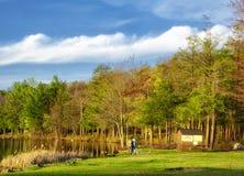 Burr Pond-Nationalpark-Frühlingsansicht lizenzfreie stockbilder