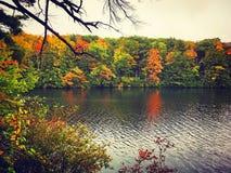 Burr Pond-Nationalpark-Herbstansicht lizenzfreies stockbild