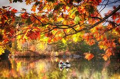 Burr Pond State Park in Autumn. The colorful trees of Autumn reflecting off of the waters in Burr State Park in Torrington, Connecticut on a sunny fall day royalty free stock photos