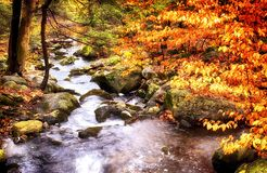 Burr Pond State Park autumn landscape. A stream flowing from the pond at Burr Pond Torrington, Connecticut during a colorful autumn royalty free stock images