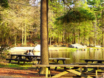 Burr Pond state park spring view. A couple sitting on the bench watching Burr Pond state park beautiful spring views in Torrington Connecticut Royalty Free Stock Photo