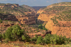 Burr Trail view Stock Photography