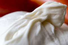 Burrata photo stock
