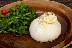 Burrata cheese with oil. And ruccola royalty free stock photo