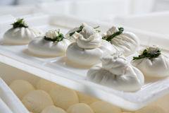 Burrata cheese on a production. Fresh burrata cheese heads on a production royalty free stock photos