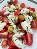 Burrata cheese and tomato salad on a white platter royalty free stock photography