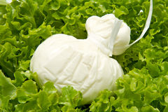 Burrata on salad Stock Images
