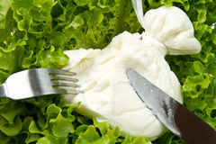 Burrata on salad Stock Photo