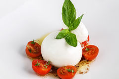 Burrata salad with tomato. And basil. Close up royalty free stock photo