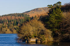 burrator dartmoor rezerwuar Zdjęcia Royalty Free