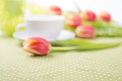 Burred background with red tulips on the table and tea cup out o Royalty Free Stock Image