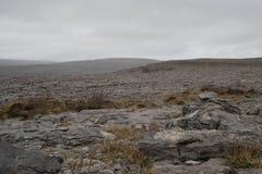 Burren国家公园,国家克莱尔,爱尔兰 免版税库存照片