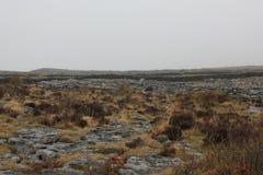 Burren是一个有趣的风景在克莱尔郡,爱尔兰 免版税库存图片