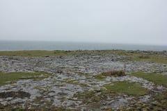Burren是一个有趣的风景在克莱尔郡,爱尔兰 库存照片