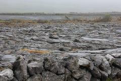 Burren是一个有趣的风景,爱尔兰 免版税库存图片