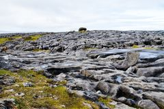 The Burren in autumn Royalty Free Stock Images