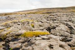 The Burren in autumn Stock Photo