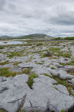 The burren, co clare,Ireland Royalty Free Stock Photo