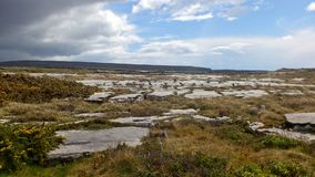 The burren in County Clare, Ireland Stock Photography