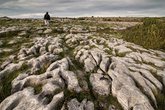 Burren, County Clare. Rocky landscape of the Burren National Park in County Clare, southwestern Ireland Royalty Free Stock Images